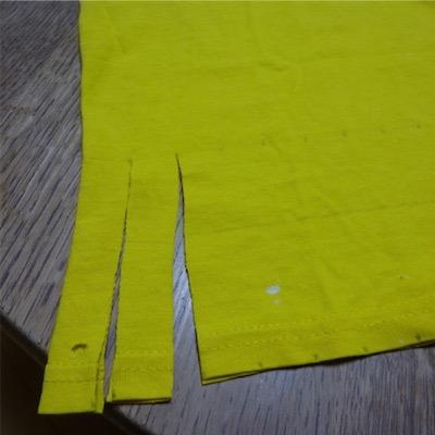 2センチ幅で長さ10センチの切り込みを入れます